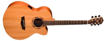 Elektrische akkoestische gitaar