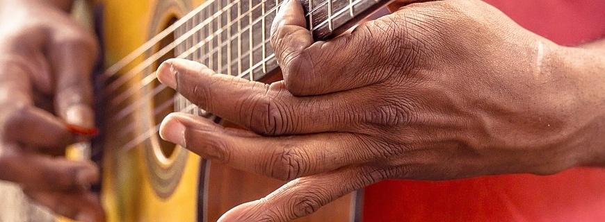 prijs van de gitaar InstrumentenInfo.nl